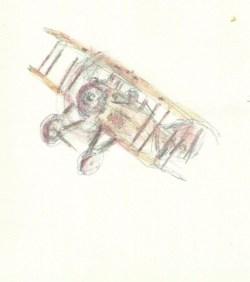 L'avion à Taram